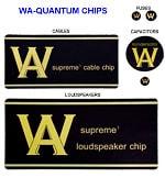 WA Quantum Chips